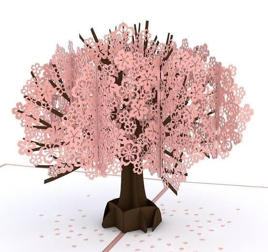 3d Cherry blossom Popup Card