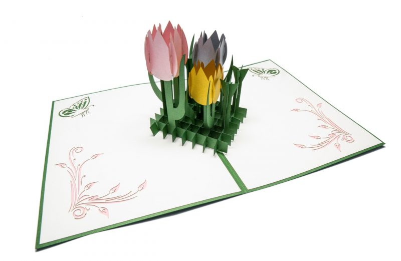 3D Tulip Pop Card